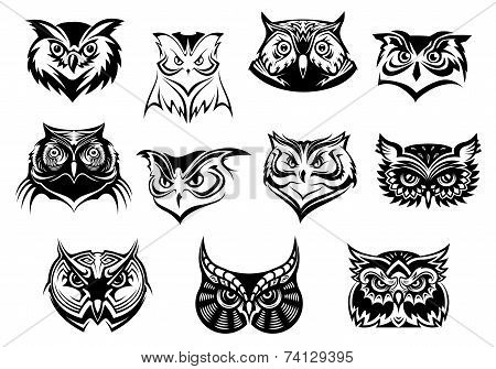 Large set of black and white owl heads