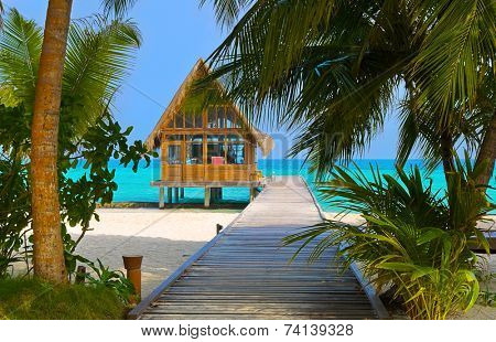 Diving club on a tropical island - travel background