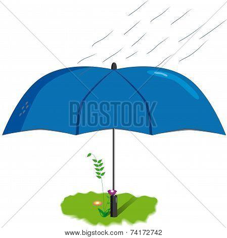 flower under an umbrella