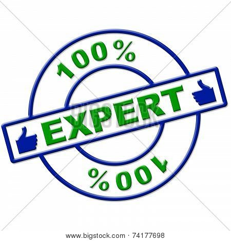 Hundred Percent Expert Means Excellence Completely And Skills
