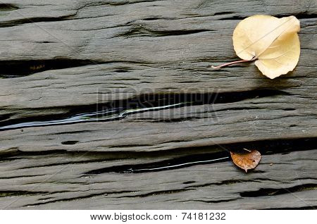 Hard Wood Background With Dried Leaves