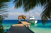 pic of kuramathi  - Yacht moored shot through a opening in the trees - JPG
