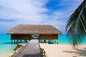 stock photo of kuramathi  - Spa salon on beach of tropical island - JPG
