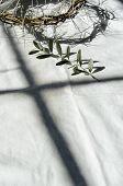 pic of passion christ  - crown of thorns reminds the passion of the christ - JPG