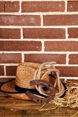 pic of lasso  - American West still life with old horseshoe - JPG