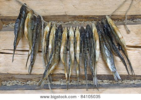 Dried Roach Fish.
