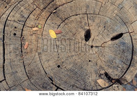 Wood Background And Stone