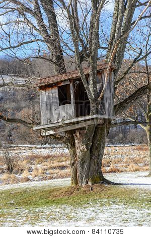 Tree house in the early Spring on a bright sunny day.