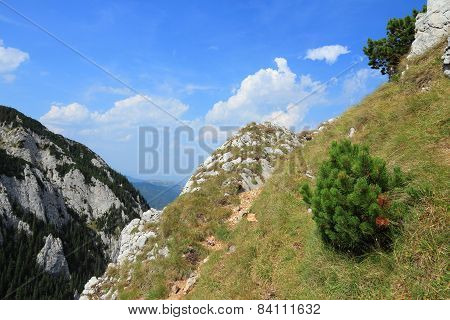 Romania Mountain Landscape