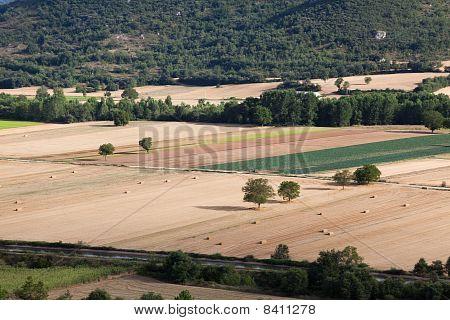 Countryside Of Burgos