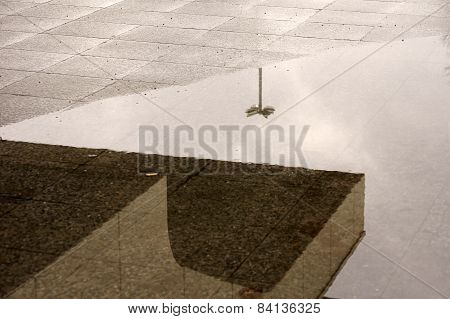 Reflections in the rain puddle