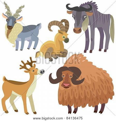 Cartoon Ungulate Animals Set