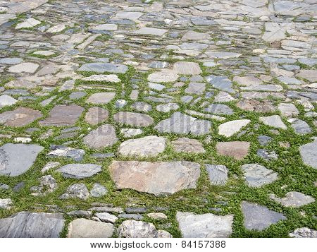 Garden Pavement Of Stones And Grass