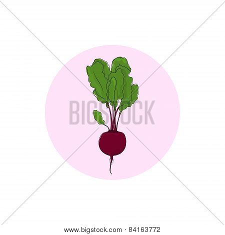 Icon beet root vegetable