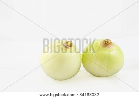 Two Onion On White Background