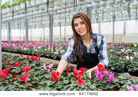 Florist woman working with flowers