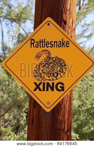 Sign rattlesnake