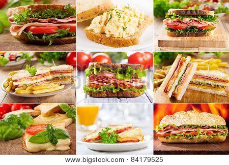 Various Sandwiches