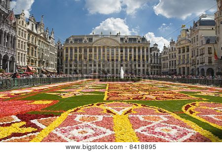 Flower Carpet In Brussels 2010