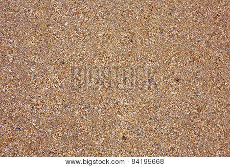 Fragmented Seashells