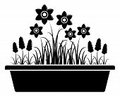 foto of planters  - vector spring flowers in planter isolated on white background - JPG