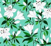 foto of azalea  - Seamless vector vintage pattern with azalea flowers - JPG