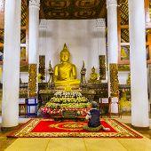 pic of buddha  - Paying respect to Buddha image at Wat Hua Kuang in Nan province - JPG