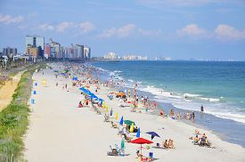 foto of snowbird  - Myrtle Beach South Carolina is a popular destination for Snow birds - JPG