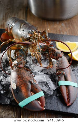 Raw clawed lobster on a table before cooking
