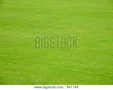 Voetbal terrein