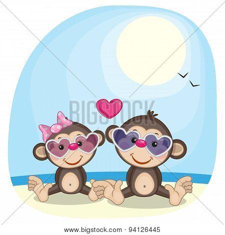Monkeys In Sunglasses