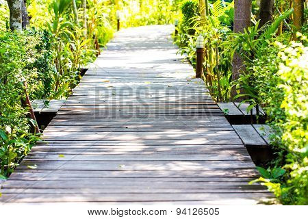 The Wooden Bridge In The Park