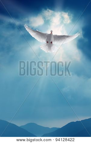 White Holy Dove Flying In Blue Sky Vertical Image