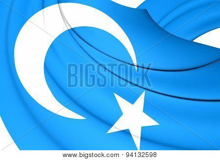 Flag Of The East Turkestan