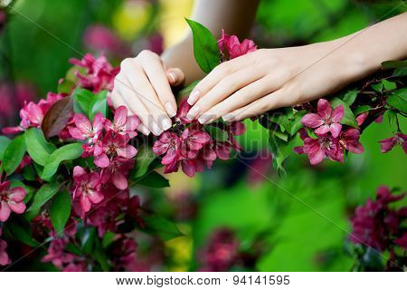 Hands with a stunning manicure on flowers