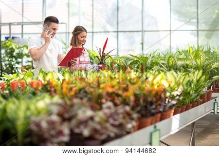 Two young florists check order list in glasshouse
