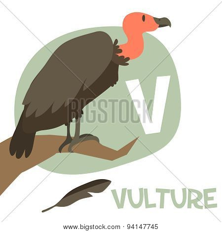 Funny cartoon animals vector alphabet letter set for kids. V is Vulture