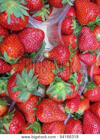 Strawberry fruit at a greengrocery
