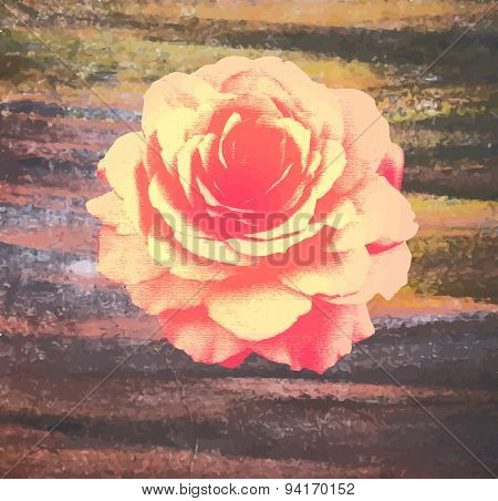 Rose on  watercolor background