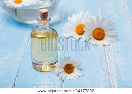 Aroma Oil And Camomile Flowers On Blue Wooden Background