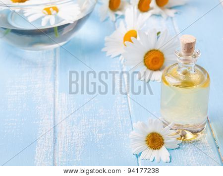 Aroma Oil And Camomile Flowers On The Blue Wooden Background