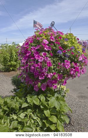 Farm And Garden Nursery In Canby Oregon.