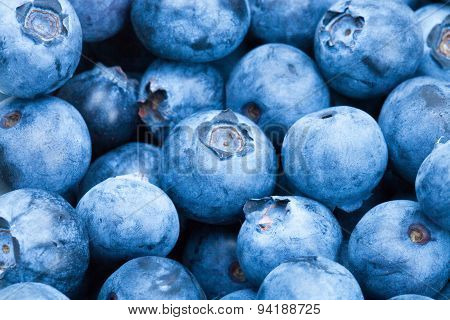 Bunch Of Blueberries - Close Up Shot