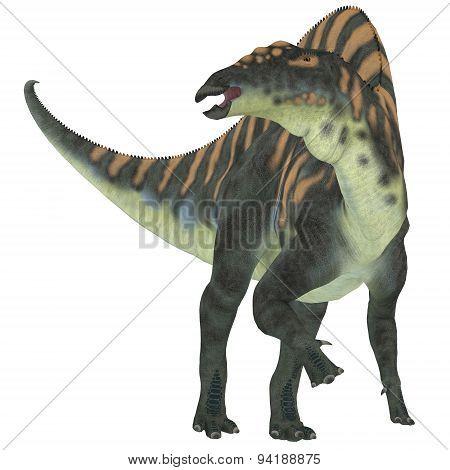 Ouranosaurus Herbivore Dinosaur