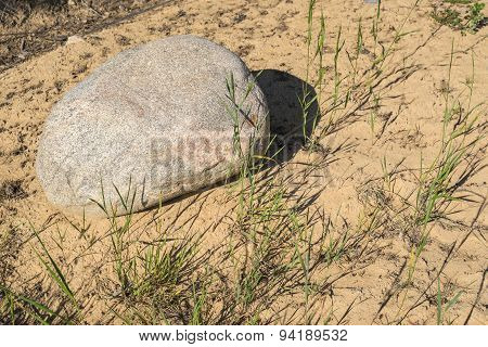 Big Boulder On The Sandy Soil With Grass
