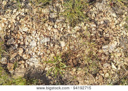 Crushed Plaster Stone Closeup In A Dark Grass