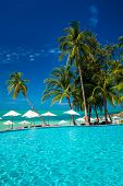 pic of infinity pool  - Large infinity swimming pool on the beach with palm trees and umbrellas - JPG