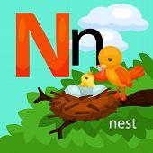 stock photo of letter n  - The vector of letter n for nest - JPG