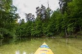 picture of kayak  - Beautiful Krutynia river landscape photographed from kayak - JPG