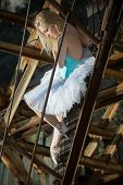 foto of tutu  - Soft ballerina with blond hair in a white tutu is sitting on an old rusty ladder - JPG